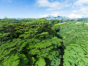 Aerial photograph of the North Fork of the Wailua River, Mt Waialeale rises in the distance, Kauai, Hawaii