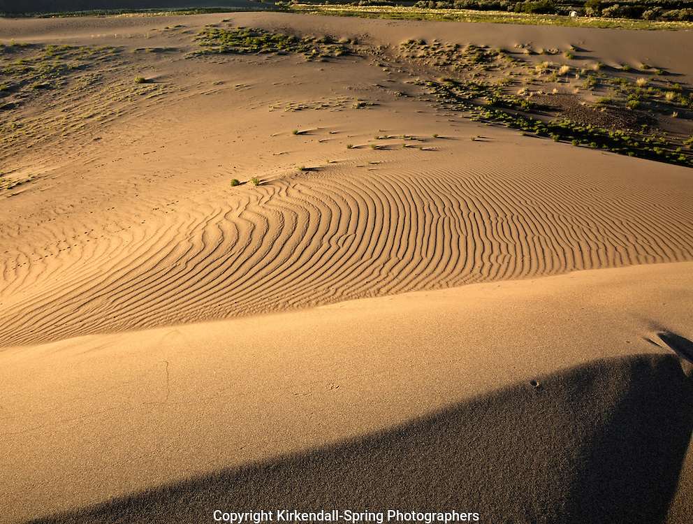 ID00668-00...IDAHO - Patterns in the sand at Bruneau Dunes State Park.