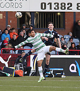 Dundee'a Paul McGinn and Celtic&rsquo;s Emilio Izaguirre challenge for the ball in the air - Dundee v Celtic, William Hill Scottish Cup fifth round at Dens Park <br /> <br /> <br />  - &copy; David Young - www.davidyoungphoto.co.uk - email: davidyoungphoto@gmail.com
