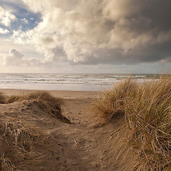 Oregon coastal scene
