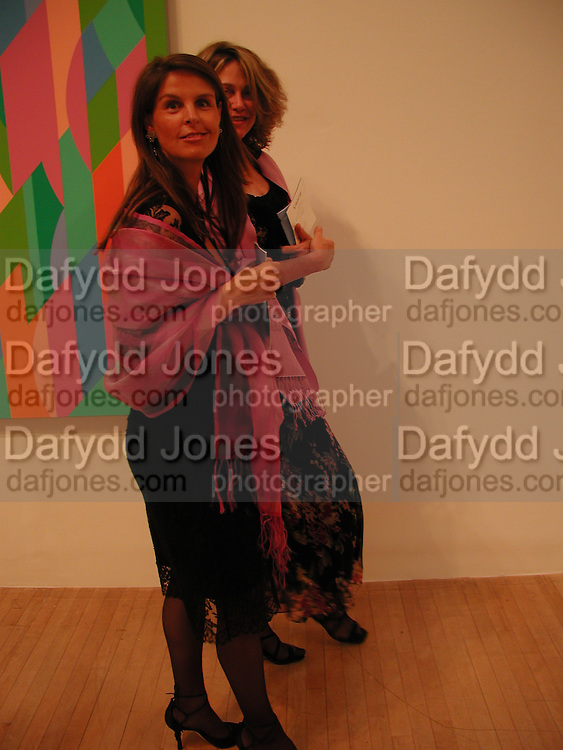 Emma Holman-West and Carinthia West, Bridget Riley dinner, Tate. 23 June 2003. © Copyright Photograph by Dafydd Jones 66 Stockwell Park Rd. London SW9 0DA Tel 020 7733 0108 www.dafjones.com