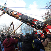 February 26, 2012 ? People use ropes, wood poles and good-old-fashioned muscle to raise a totem pole estimated to weigh nearly 5,000 pounds at the Seattle Center after a procession from pier 57 in Seattle. The 33-foot tall totem pole was erected in honor of slain Native American woodcarver John T. Williams. Williams was shot and killed by a Seattle Police officer in 2010. The shooting was later ruled unjustified .