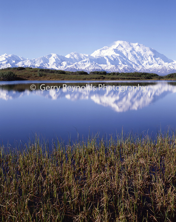 Lake, Pond, reflection, Summer, Mt. McKinley, Mount McKinley, Denali, Denali National Park, National Park, Alaska, Alaska Range