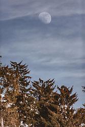 THEMENBILD - der Blick von der Jufenalm in Maria Alm auf die Winterlandschaft und das Steinerne Meer, aufgenommen am 16. Februar 2019 in Maria Alm, Oesterreich // in Maria Alm, Austria on 2019/02/16. EXPA Pictures © 2019, PhotoCredit: EXPA/Stefanie Oberhauser