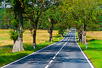 A country road near Rheinsberg, Germany