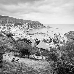 Catalina Island Avalon California black and white photo. Picture includes Avalon Bay, Catalina Casino, Avalon buildings, and the Pacific Ocean. Catalina Island is a popular travel destination off the coast of Southern California in the United States.