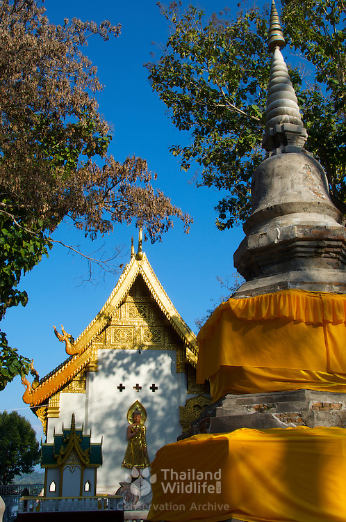 Wat Chom Choeng Temple in Chiang Saen, Chiang Rai Northern Thailand South East Asia.