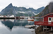 A red rorbu (fishing shanty) accommodates visitors on the tiny island town of Hamnøy is connected by bridge to Moskenesøya (The Moskenes Island), in the Lofoten archipelago, Nordland county, Norway.