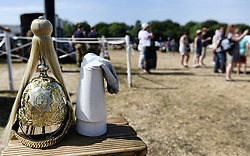 © London News Pictures.  14/07/2013. Horses on parade at an open day at the  Household Cavalry Mounted Regiment at West Tofts Camp, Thetford, Norfolk. Visitors get a chance to meet the horses and men of the Household Cavalry and learn all about what the Regiment does. The horses and men also showed off their newly enhanced skills with a programme including tent pegging and show jumping competitions.  Photo credit: Sergeant Alison Baskerville/LNP<br /> <br /> NOTE TO DESKS: <br /> MoD release authorised handout images. <br /> All images remain crown copyright. <br /> Photo credit to read - Sergeant Alison Baskerville RLC