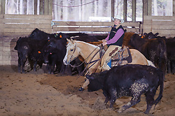 April 30 2017 - Minshall Farm Cutting 2, held at Minshall Farms, Hillsburgh Ontario. The event was put on by the Ontario Cutting Horse Association. Riding in the 5,000 Novice Horse Class is Michelle Waters on Genuine Whyte Gold owned by Noreen Whyte.