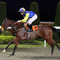 Flying Kitty and Keiren O'Neill winning the 6.05 race