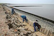 Onderhoud aan de Waddenzeedijk. Dijkwerkers plaatsen basaltzuilen.