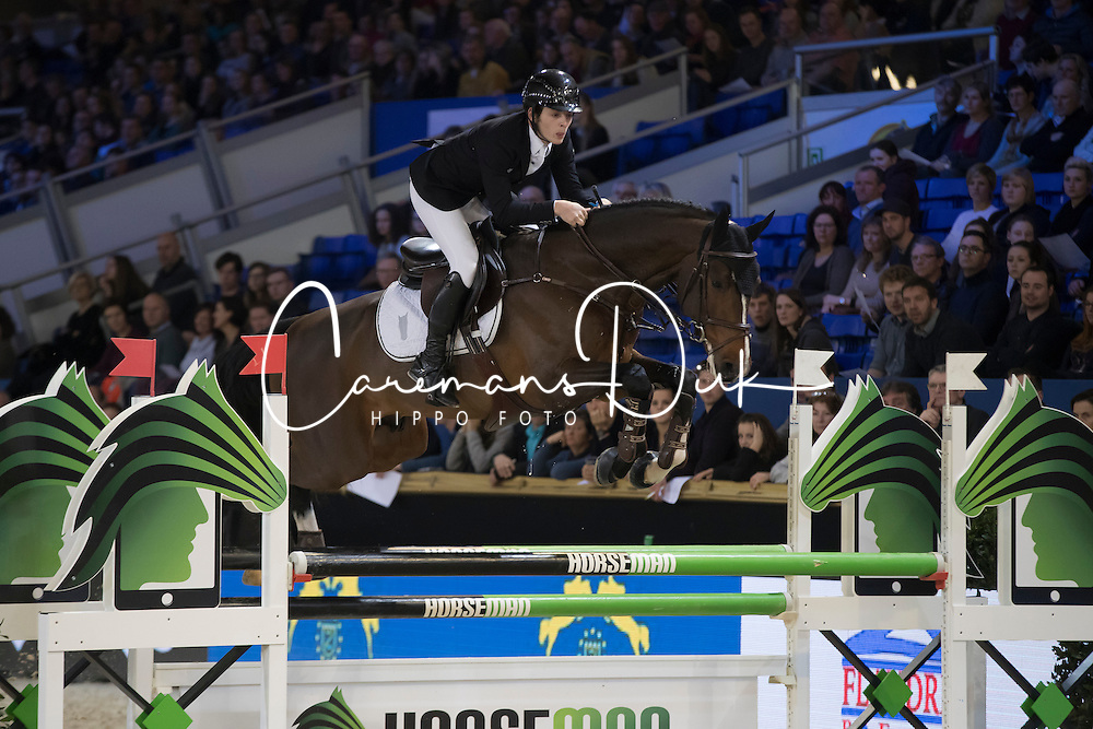 Bluman Mark, Luigi d Eclipse<br /> Young Stallions 5 years of age<br /> Vlaanderens Kerstjumping Memorial Eric Wauters<br /> &copy; Dirk Caremans<br /> 27/12/2016