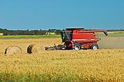 harvesting wheat<br /> Fairlight<br /> Saskatchewan<br /> Canada