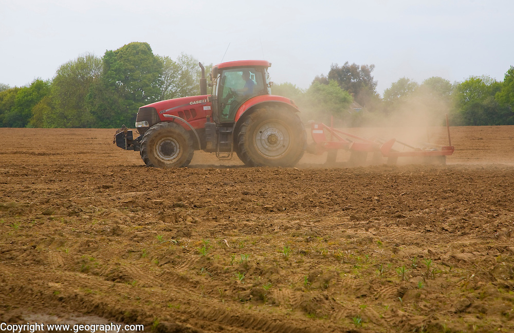 Tractor harrowing soil in field in preparation for planting, Shottisham, Suffolk, England
