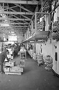 18/04/1963<br /> 04/18/1963<br /> 18 April 1963<br /> Banana mechanizatior machine at Tropical Fruit Company, Sir John Rogers Quay, Dublin. Image shows machine for the movement of bunches of bananas down the line for packing.