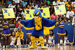 Charlotte Amalie High School Chicken Hawks