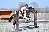 12 - 23rd Feb - Show Jumping