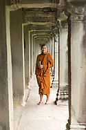 Monk standing in passageway at Angkor Wat, Siem Reap, Cambodia
