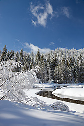 """Snowy Truckee River 5"" - Photograph of a snowy Truckee River and trees in the winter."