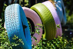 Painted tires, Heidelberg Project, Detroit, Michigan.  The Heidelberg Project is a grass roots project started by artist Tyree Guyton that uses art to help revitalize the embattled neighborhood.  Each year, over 275,000 people visit the project .  For more information, go to www.heidelberg.org