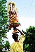 Temples, guardians, offerings, Bali, Ubud
