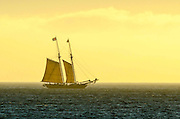 Tall Ships Festival in Dana Point California