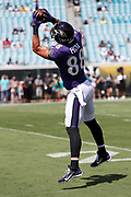 Baltimore Ravens tight end Dennis Pitta (88) jumps and catches a pass while warming up before the 2016 NFL week 3 regular season football game against the Jacksonville Jaguars on Sunday, Sept. 25, 2016 in Jacksonville, Fla. The Ravens won the game 19-17. (©Paul Anthony Spinelli)