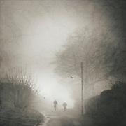 A couple on a stroll through a foggy autumn morning landscape