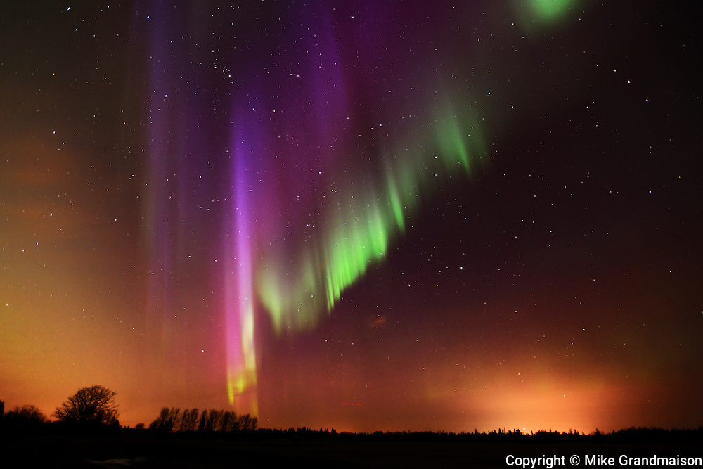 Northern lights (Aurora borealis)<br /> Birds Hill Provincial Park<br /> Manitoba<br /> Canada