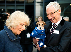 The Duchess of Cornwall (L) speaks with television presenter Paul O'Grady (R) during a visit to Battersea Dogs & Cats Home where she met staff and volunteers in London on December 12, 2012. Earlier in the year The Duchess re homed Bluebell, a nine-week-old Jack Russell Terrier after she was found as a stary wandering in a London park. Her Royal Highness adopted Beth, a Jack Russell Terrier puppy, from Battersea Dogs & Cats Home in August 2011. In September of this year, The Duchess adopted a second Jack Russell Terrier puppy from Battersea, called Bluebell. Established in 1860, Battersea Dogs & Cats Home aims never to turn away a dog or cat in need of its help. The charity reunites lost dogs and cats with their owners or cares for them until new homes can be found for them, giving them shelter and the highest standards of kennelling and veterinary care. In 2011 the Home cared for almost 6,000 dogs and 3,000 cats across its three centres in South West London, Old Windsor, Berkshire and Brands Hatch, Kent. In its 152 year history Battersea has rescued, reunited and rehomed over 3.1 million dogs and cats. Today the charity rehomes dogs and cats across the UK and overseas. It takes an average of 45 days to find a new home for a dog and 28 days for a cat, and there is no time limit on how long an animal can stay at the Home. EXPA Pictures © 2015, PhotoCredit: EXPA/ Photoshot<br /> <br /> *****ATTENTION - for AUT, SLO, CRO, SRB, BIH, MAZ only*****