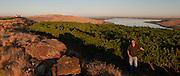 Jarrod Boyle, Alexandria Nicole Cellars, Horse Heaven Hills Destiny vineyard, Washington