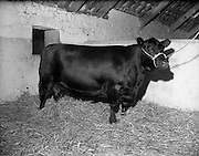13/08/1959<br />