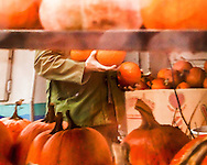 Among an abundance of pumpkins, watching someone in a comfortable khaki-green jacket and and armful of pumpkins makes for a feel-good moment on a rainy October day. <br /> A painterly effect applied in post processing adds texture and enhances the dreamy, liquid atmosphere. <br /> <br /> For IMAGE LICENSING just click on the &quot;add to cart&quot; button above.<br /> <br /> Fine Art archival paper prints for this image as well as canvas, metal and acrylic prints available here:<br /> https://2-julie-weber.pixels.com/featured/autumn-plenty-julie-weber.html