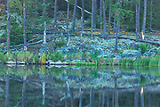 Reflection of Precambrian shield rock and trees in Isabel Lake<br />Kenora<br />Ontario<br />Canada