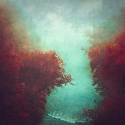 River Wupper on a misty September morning - tinted and manipulated photograph<br /> Redbubble products--&gt; https://rdbl.co/2VZMgrh