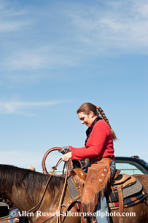 Cowgirl Jessica Sarrazin prepares to rope and drag calves to the fire to be branded, Wilsall, Montana, Bridger Mountains,<br /> MODEL RELEASED, PROPERTY RELEASED