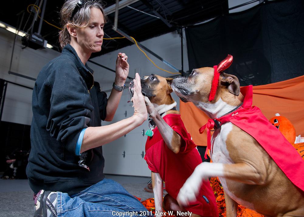 Dogma Howl-O-Ween 2011