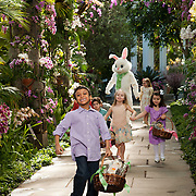 A photo from the Martha Stewart Easter Special for the Hallmark Channel.
