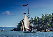 Issac H Evans Maine Windjammer under sail.