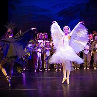 2015 (CDT) The Swan Princess