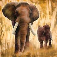 Painterly rendition of a grown elephant and a young one walking towards the viewer against a background of pale yellow and gold stylized grasses