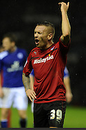 Cardiff city's Craig Bellamy makes his views known to the assistant referee. NPower championship, Leicester city v Cardiff city at the King Power stadium in Leicester on Saturday 22nd Dec 2012. pic by Andrew Orchard, Andrew Orchard sports photography,