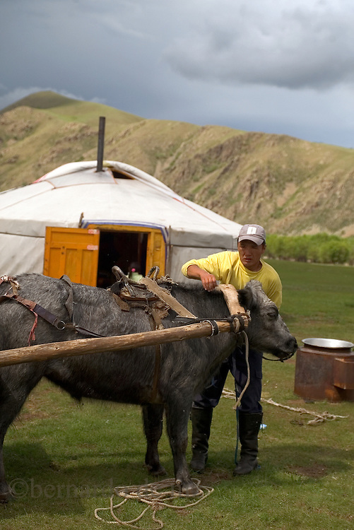 """Images of the daily life of the Mongols nomads in the country side of Mongolia, where mostly of the populations live in """"Gers"""" the typical mongol house, as they ancesters used to live for centuries.  July 2007. Photo: Bernardo De Niz/ Mongolia."""