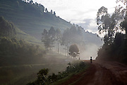 A farmer walks to market in the early morning mist surrounded by the beautiful Ugandan countryside along the Kisoro Road in the Kabale region of Uganda.