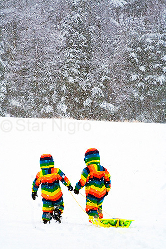 Love is.... photo of two little friends sledding on a snowy afternoon on Sled Hill in Woodstock,NY by Star Nigro.<br /> <br /> <br /> <br /> &copy; 2019 All artwork is the property of STAR NIGRO.  Reproduction is strictly prohibited.