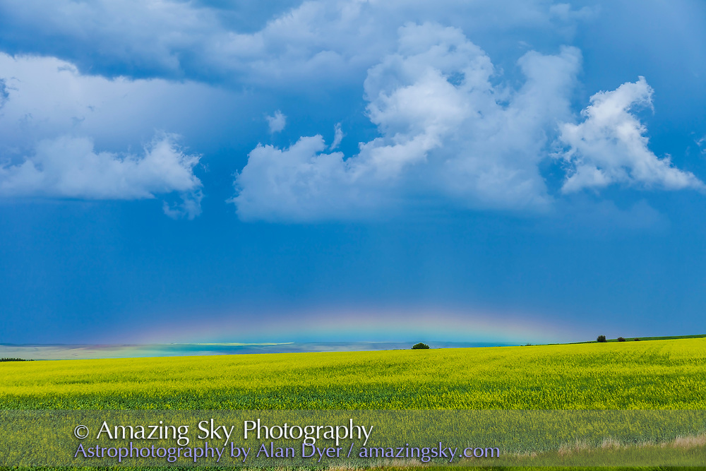 A low altitude rainbow, barely visible over the yellow canola field due to the high Sun altitude at the time in mid-afternoon in July. Taken from home on a stormy day on July 4, 2013. Metered exposure with 16-35mm lens and Canon 5D MkII.