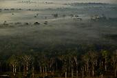 Aerial Acre Amazon