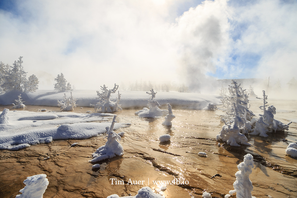 As the world's first national park, a visit to Yellowstone in any season does not disappoint. Winter, however is different. It is in the winter, when the temperatures routinely drop lower than anywhere else in the USA&rsquo;s lower 48 states, that the park's ecology and geology shine the brightest. Yellowstone is at its best when the park is at its coldest. Renowned for its abundant wildlife and extensive geothermal features (most extensive in the world), Yellowstone has at times been faulted for lacking the iconic vistas that define some of the other US national parks, such as Yosemite or Glacier.  However, the ecological variety and ever-changing geothermal landscapes creates iconic scenes that may only last a moment.  The trick is to be at the right spot, at the right moment to witness it. And it is because of the fleeting nature of these scenes that make the resulting image more profound; it serves as a reminder of the Earth's transient nature. On a geological scale, this is universally true everywhere, the earth's surface is in constant flux.  But on a human scale we rarely have the opportunity to witness this geological ballet. These types of geological changes to the earth are most apparent here than anywhere else in the world.  <br /> It needs to be extremely cold for snow and ice to lay cover within a hot and steamy thermal area, and even colder for the delicate rime frost formations persist and grow.  On the day this photo was taken, a low temperature of -56F/-50C was recorded within the park.  It is under conditions like these that the rime frost on a tree turns can turn it into a ghost.<br /> Canon EOS 6D, Canon EF 24-105mm f/4.0L IS USM, handheld<br /> 1/1000s, f/8; 24mm; ISO100<br /> Post Processing done using Lightroom 5.7.1