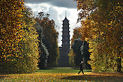 © Licensed to London News Pictures. 01/11/2011. Kew, UK. A man walks through the leaves in front of the Pagoda in the Japanese garden. People enjoy the Autumn sunshine in Kew Gardens today, 1st November 2011. Parts of the UK are experiencing higher than average temperature for the time of year.  Photo credit : Stephen Simpson/LNP